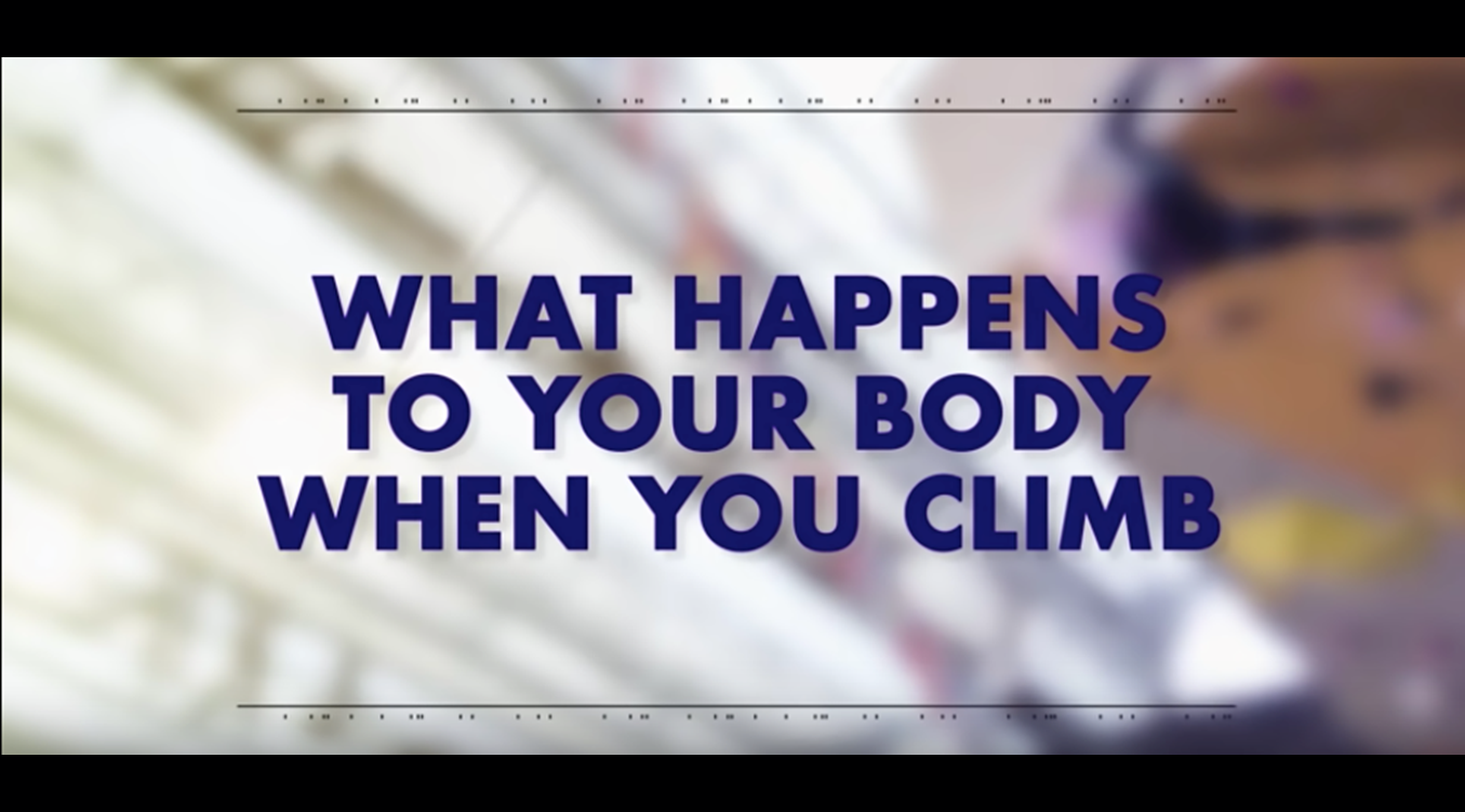 Red Bull & Pioneer Productions 'What Happens to Your Body When You Climb' now live on YouTube